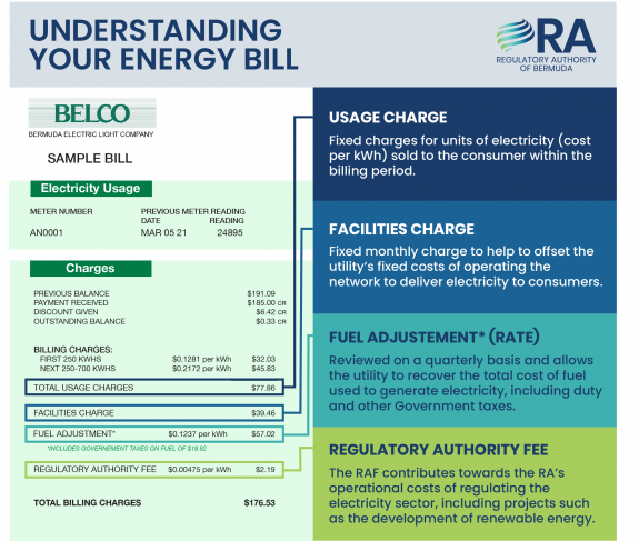 RA_electricity infographic 8